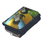 Blue and Gold Macaw Wallet