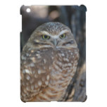 Burrowing Owl Cover For The iPad Mini