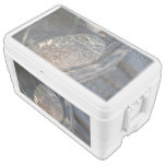 Burrowing Owl Ice Chest