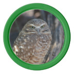 Burrowing Owl Poker Chips