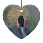 Curious African Crowned Crane Ceramic Ornament