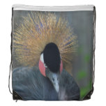 Curious African Crowned Crane Drawstring Backpack