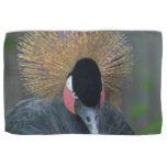 Curious African Crowned Crane Hand Towel