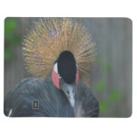 Curious African Crowned Crane Journal