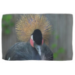 Curious African Crowned Crane Kitchen Towel