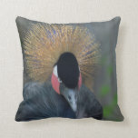Curious African Crowned Crane Throw Pillow