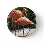 Flock of Flamingos Button