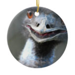 Large Emu Ornament