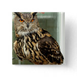 Long Eared Owl Pin