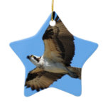 Osprey Bird Ornament