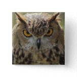 Owl Photo Square Pin