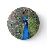 Peacock Round Button