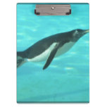 Penguin Swimming Underwater Clipboard
