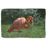 Perfect Pink Flamingo Hand Towel