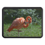 Perfect Pink Flamingo Tow Hitch Cover