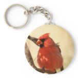 Red Cardinal  Keychain