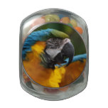 Ruffled Blue and Gold Macaw Glass Jar