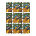 Ruffled Blue and Gold Macaw Stroller Blanket
