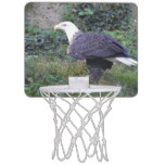 Standing American Bald Eagle Mini Basketball Hoop