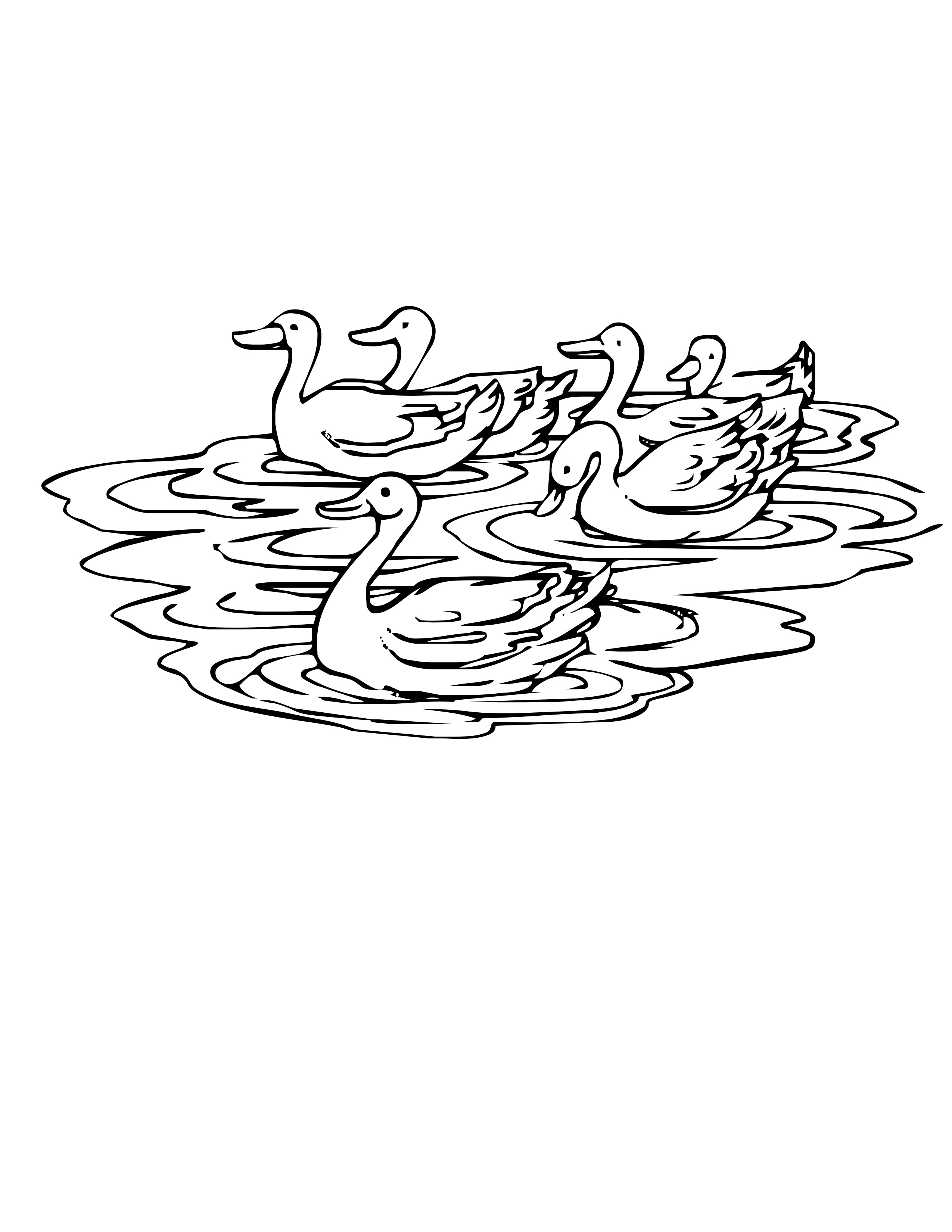 87 Wood Duck Coloring Page