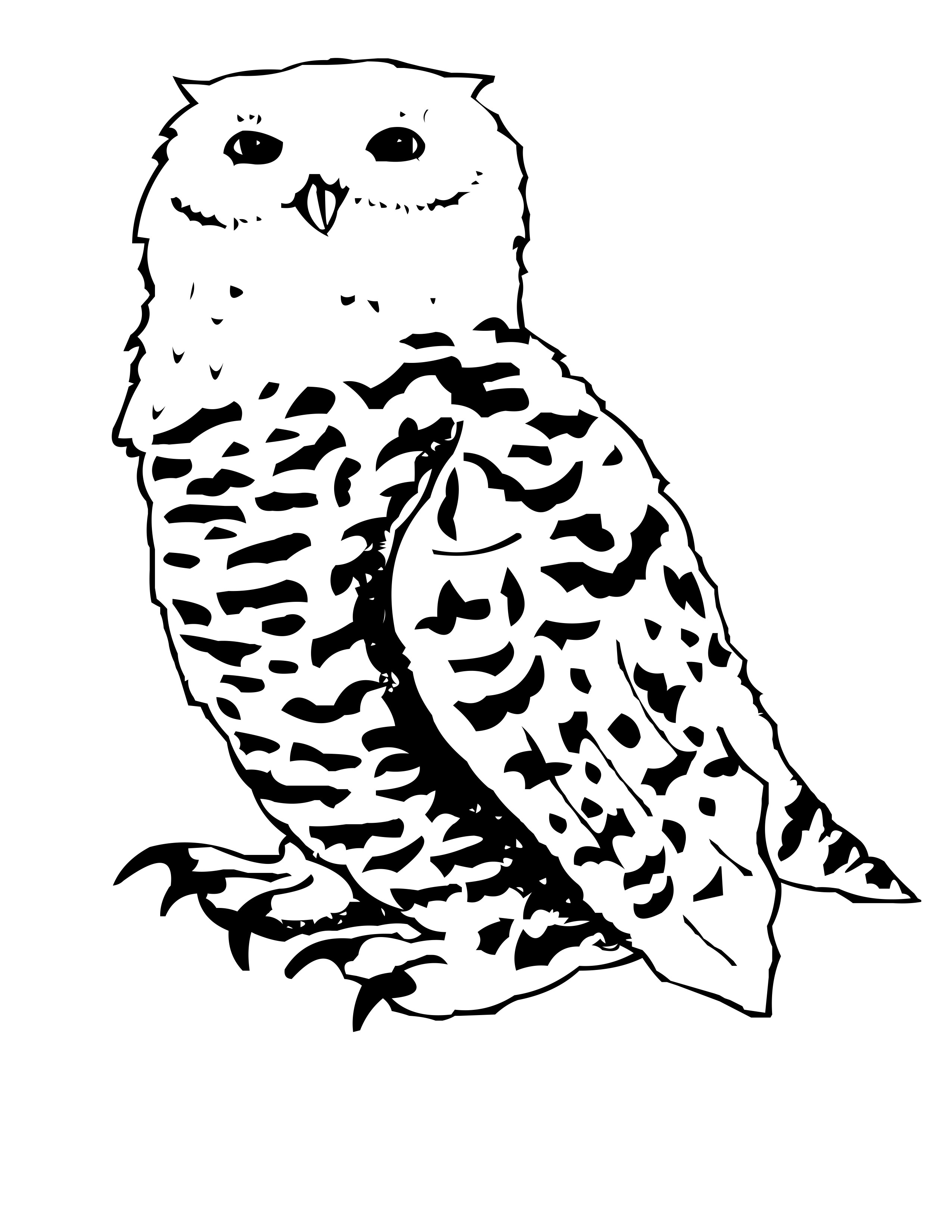 Owl coloring pages owl coloring page snowy owl coloring pages great